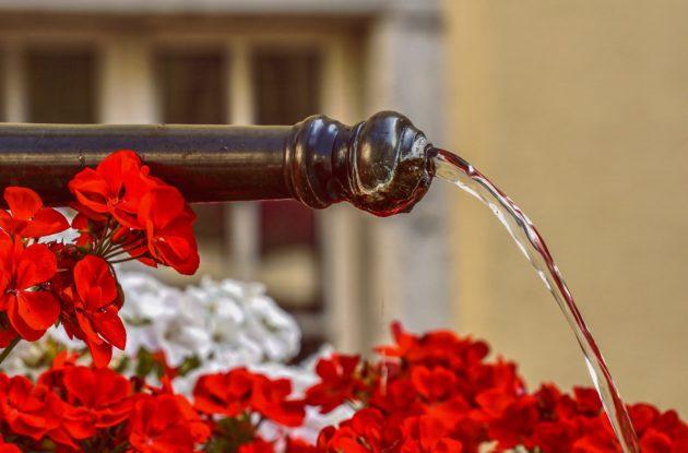 Arrosage et fontainerie